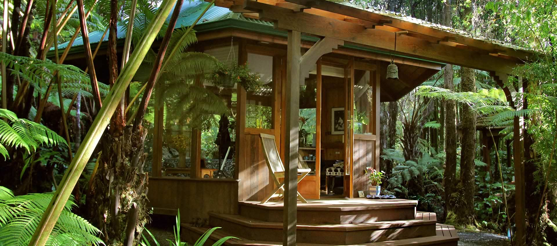 Cedar Sanctuary Cottage entrace embraced by lush tree ferns