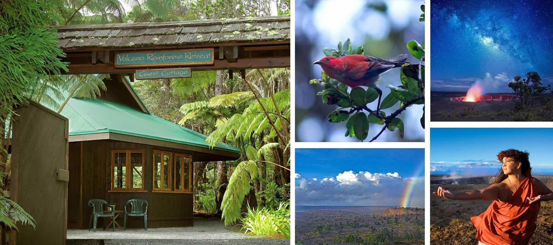 Volcano Rainforest Retreat Guest Cottage and Hawaii Photo Collage
