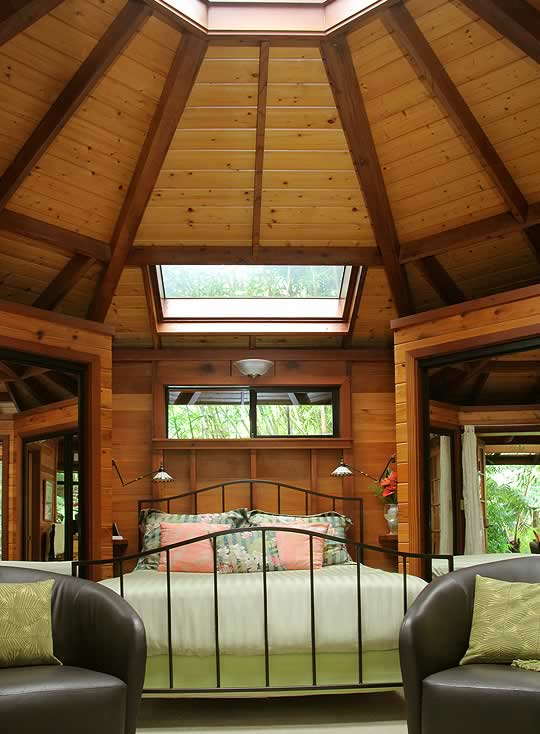 Forest House interior domed skylight