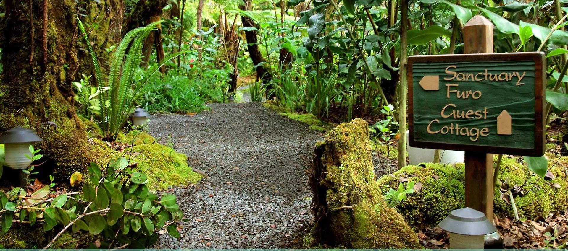 Volcano-Hawaii-path-2