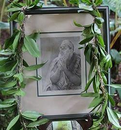 Artwork draped in leaves