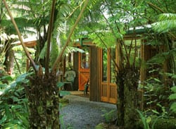 Volcano Rainforest Retreat Entrance